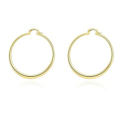 Fashion jewelry alloy earring Promotion good quality hot sales in Europe and the US market lower prices Hoop earrings exaggerated discounts