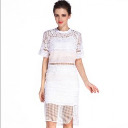 Amoi fashion elegant temperament round neck short sleeve shirt perspective lace skirt