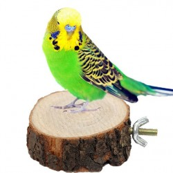 2017 New Sale Parrot Pet Bird Chew Toy Wooden Hanging Swing Birdcage Parakeet Cockatiel Cages Free Shipping