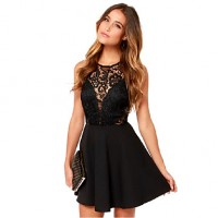 Women & #039;S Party/Work/Vintage/Sexy/Casual/Lace Lace Skater Dress , Round Neck Chiffon/Lace