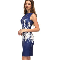 Women's Fashion Floral Print Dress Sleeveless Party Dresses Vintage Bodycon Dress