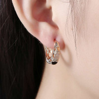 Lady's Elegant Dangle Solid Color Earrings