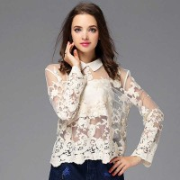 New spring and summer in Europe and the US market high-end fashion lapel long-sleeved cardigan embroidered lace shirt temperament