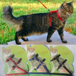 Cat Harness And Leash Popular Sale 3 Colors Nylon Products For Animals Adjustable Pet Traction Harness Belt Cat Kitten Halter Collar