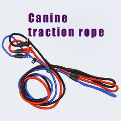 Golden Teddy leash dog rope traction Sheng Samo resistant bites dog collar chain traction with style