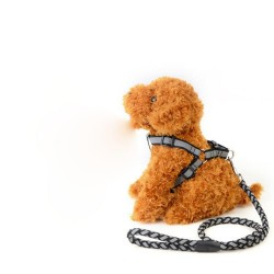 Leash dog leash dog traction rope chain large dogs small dogs Teddy reflective dog leash dog rope sling