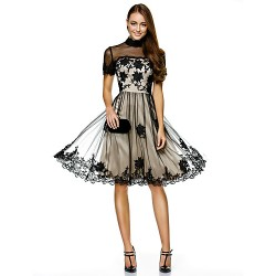 Cocktail Party/Company Party Dress-Champagne A-Line High Neck Knee-Length Tulle